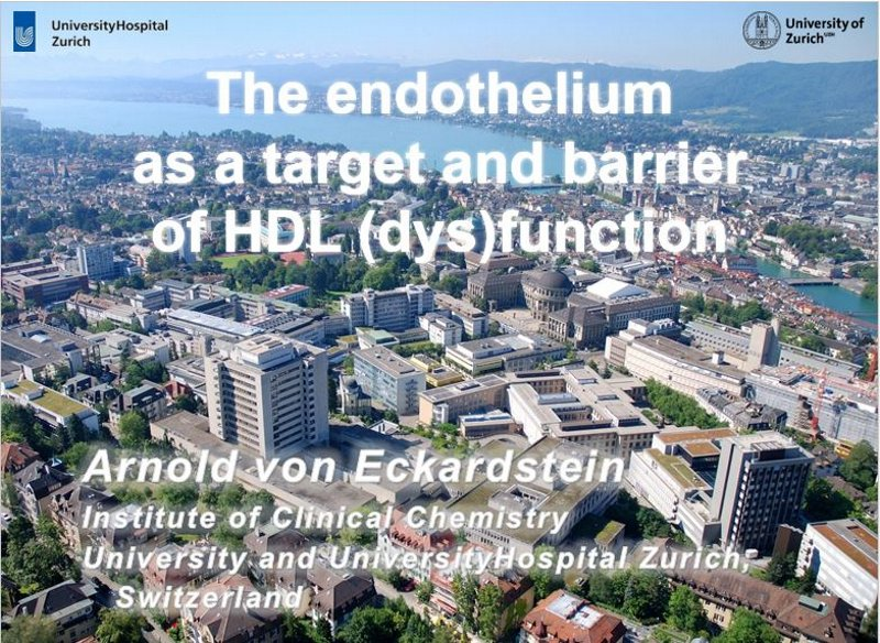 The endothelium as a target and barrier of HDL (dys)function - PACE-CME