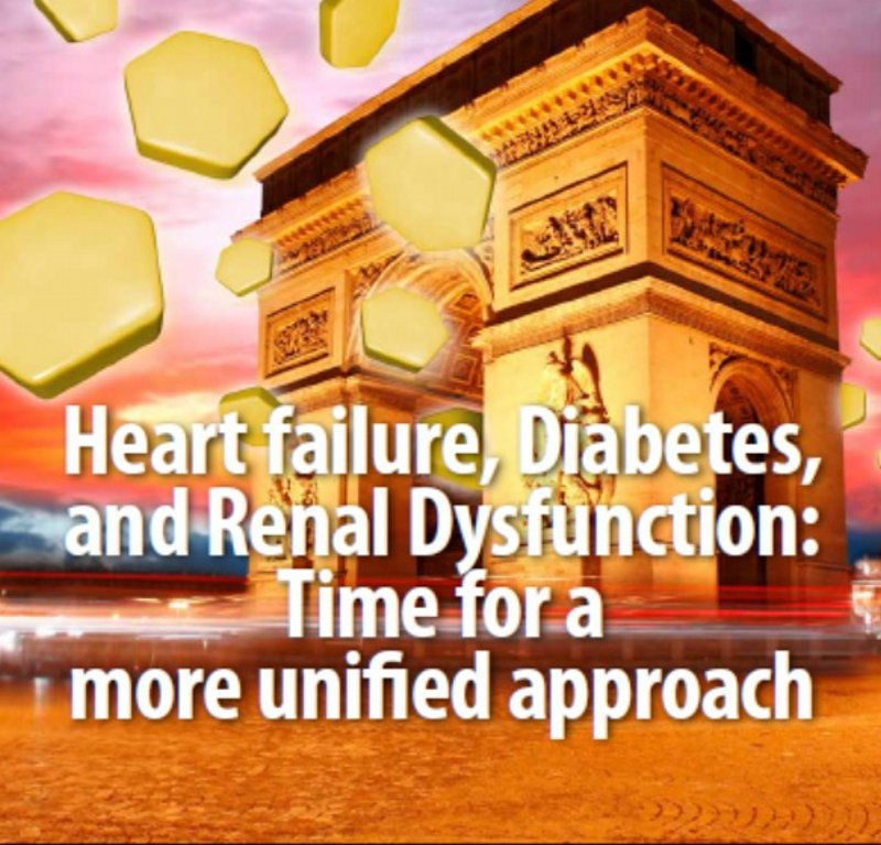 Slides: Challenges in Heart Failure management: Diabetes and Renal Impairment