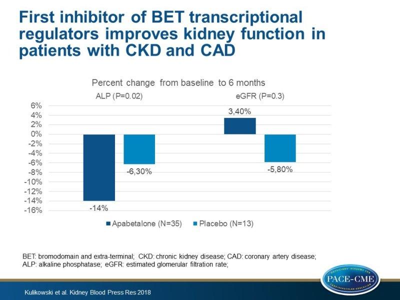 First Inhibitor Of Bet Transcriptional Regulators Improves Kidney