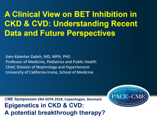This lecture by prof. Kamyar Kalantar-Zadehwas part of a CME accredited symposium: Epigenetics in CKD & CVD: A potential breakthrough therapy? held at ERA-EDTA 2018 in Copenhagen