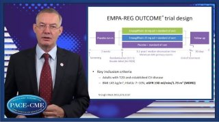 Prof. Wanner summarizes the key lessons from the EMPA-REG OUTCOME trial in patients with pre-existing CKD.