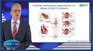 Prof. Marx summarizes the findings of recently published CV outcome trials with SGLT2 inhibitors and discusses potential mechanisms explaining the CV effects of SGLT2 inhibitors in patients with T2DM at high CV risk.