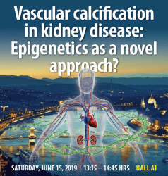 Vascular calcification in kidney disease: Epigenetics as a novel approach?