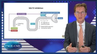 Prof. Adriaan Voors addresses 3 major questions on the future of SGLT2i in HF: on routinely use in T2DM and HF, use in HF without T2DM, and ongoing trials.