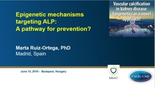 This lecture by prof. Marta Ruiz-Ortega was part of a CME-accredited symposium