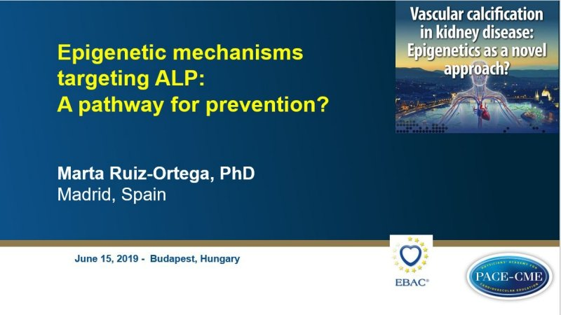 Slides: Epigenetic mechanisms targeting ALP: A pathway for prevention?
