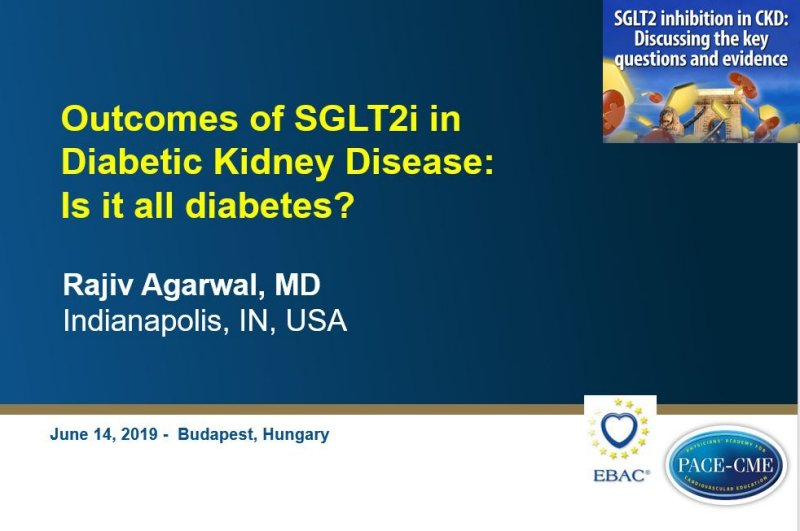 Slides: Outcomes of SGLT2i in Diabetic Kidney Disease: Is it all diabetes?