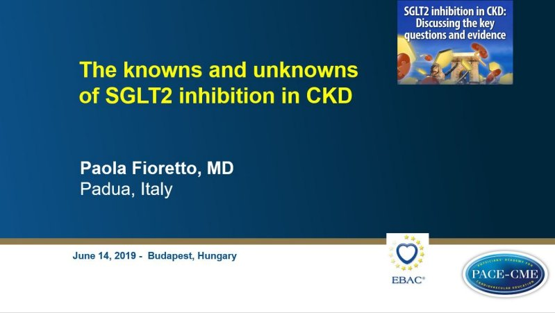 Slides: The knowns and unknowns of SGLT2 inhibition in CKD