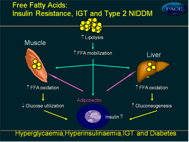 tzd u2019s in the management of diabetes  u0026 cv disease