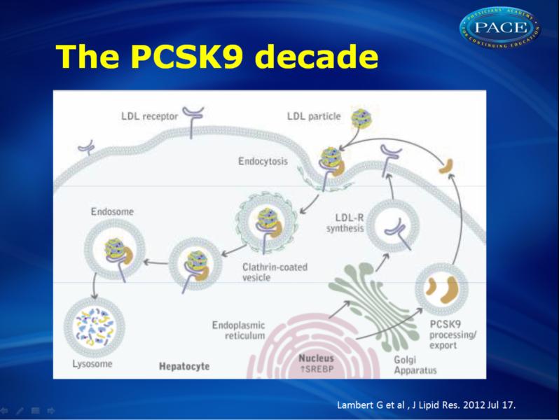 pcsk9 inhibitors