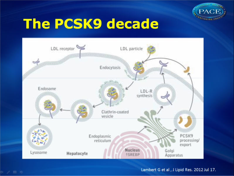 PCSK9 inhibition: hope for treating dyslipidemia?