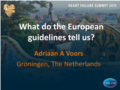 05 What do the European guidelines tell us - prof Voors.pdf (2,5MB)