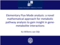 Elementary Flux Mode analysis.pdf (0,6MB)